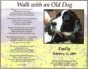 Walk With An Old Dog Pet Loss Poem Laurel Hunt Books Pet