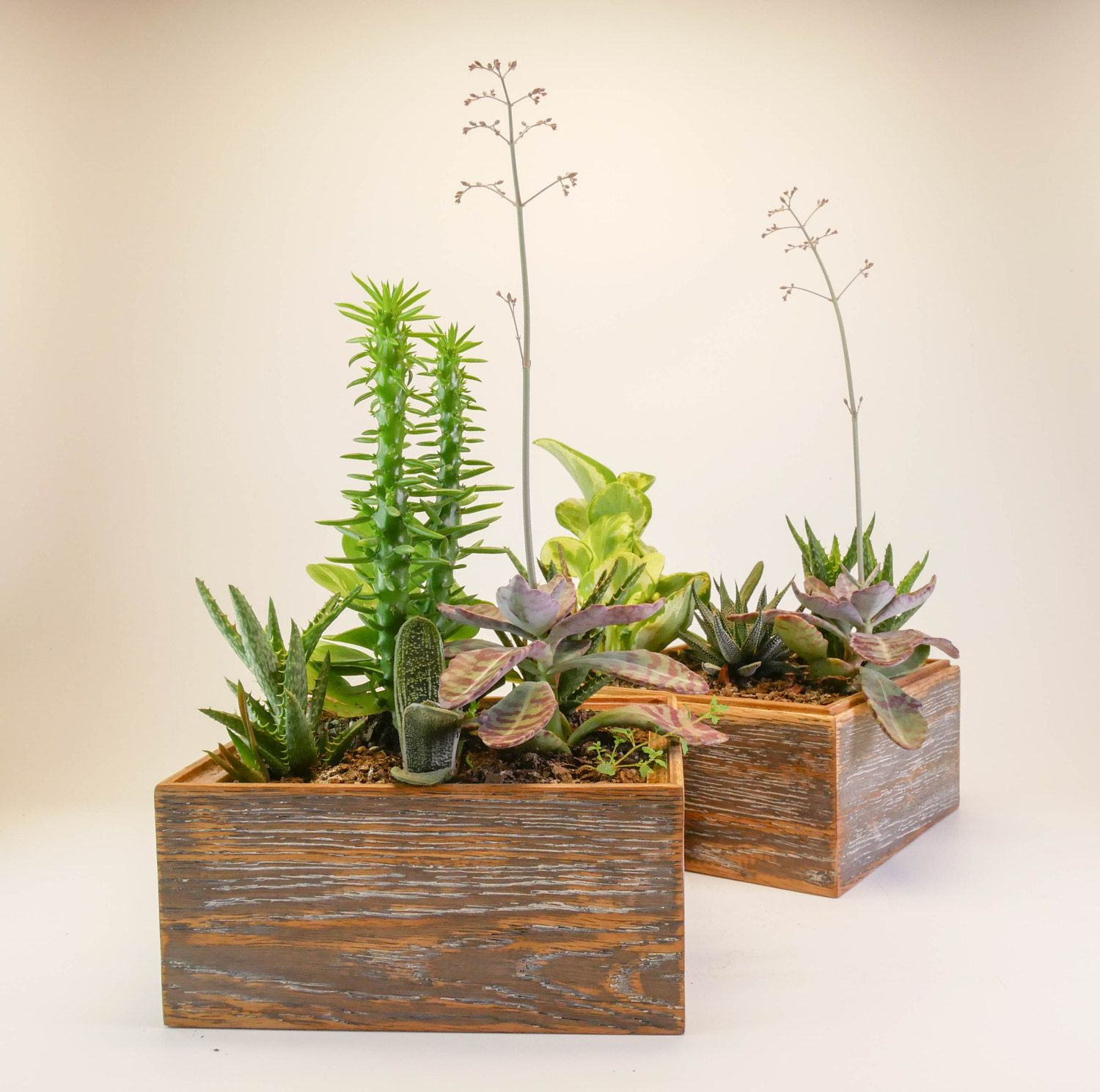 planter artistic diy indoor wa interior in wall planters