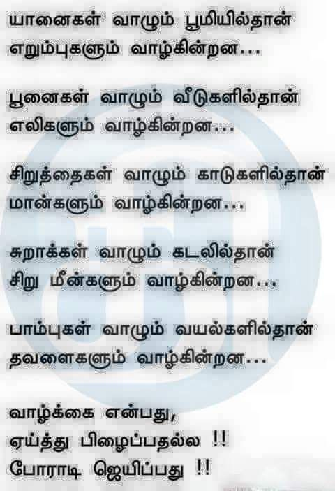 Pin By Chitra On Tamil Luv Pinterest True Quotes Life Quotes