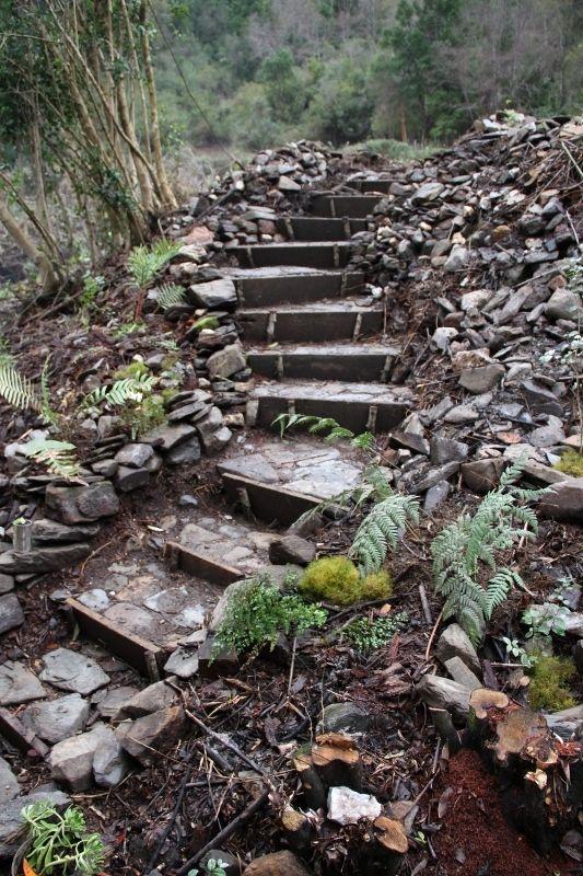 hermosa escalera de piedra laja en el jardn