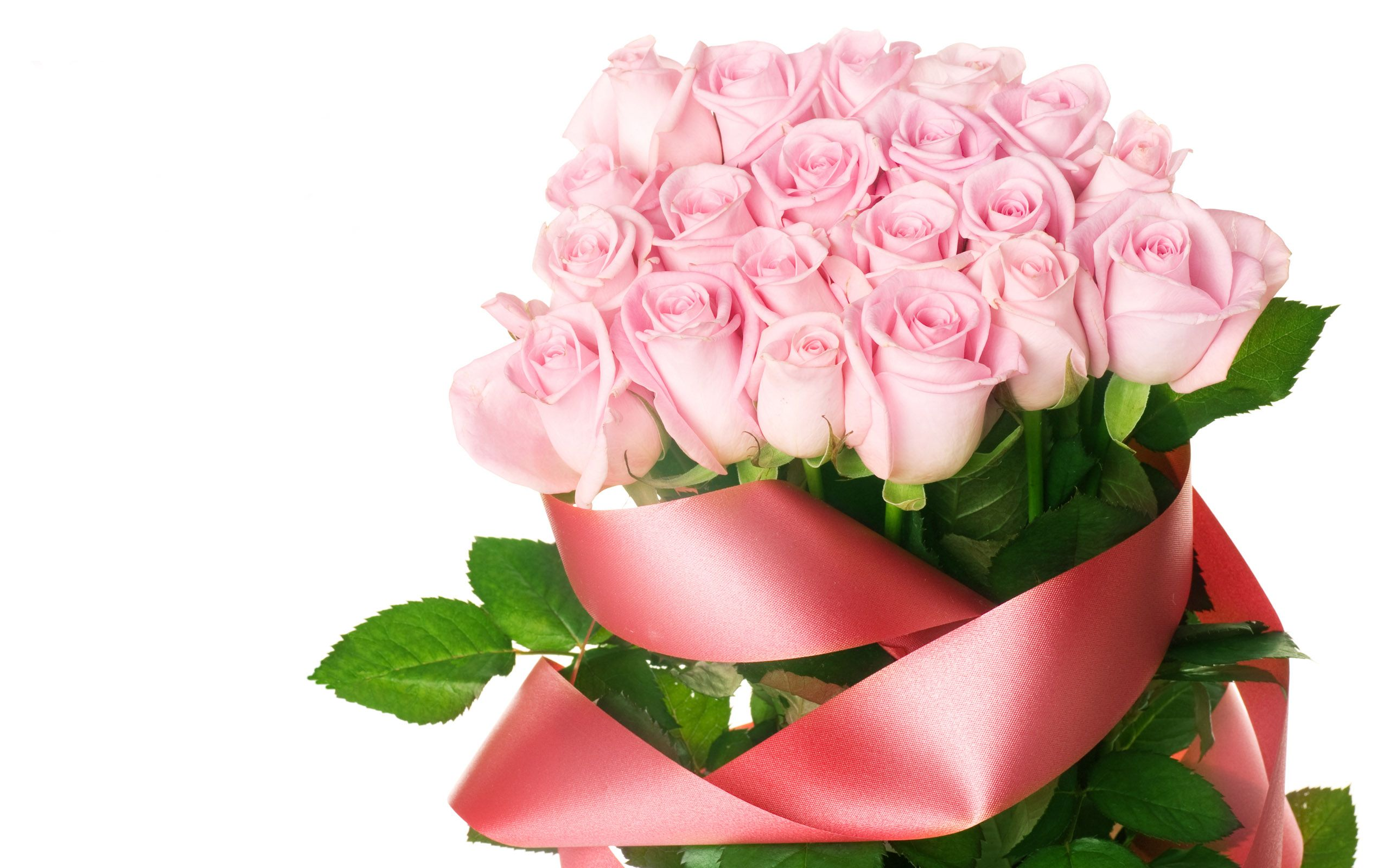 Fresh Flowers | pink beautiful flowers3 150x150 Preserving Fresh ...
