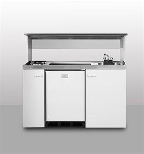 Tiny Home Combo Sink/stove/fridge