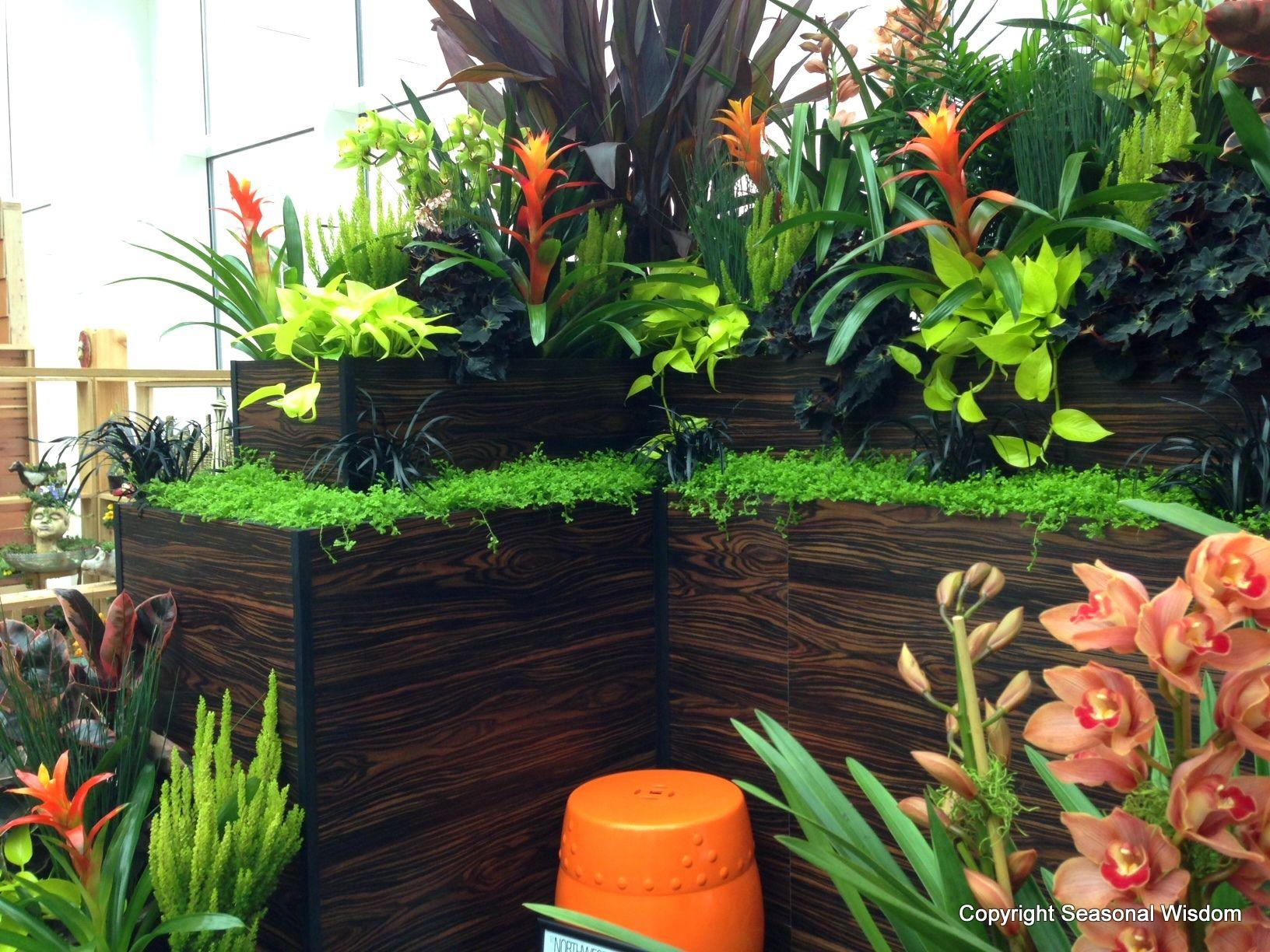 Small Tropical Garden Ideas | ... Make Splash at 2013 ...