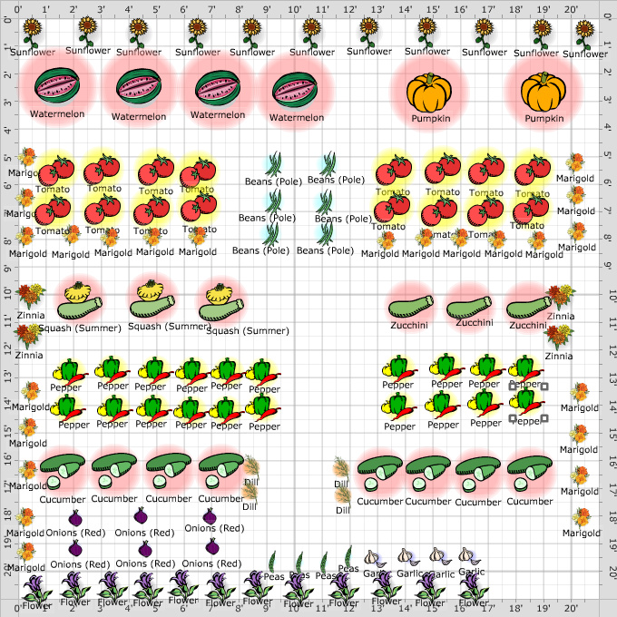 vegetable garden layout Divas Garden 2012 Vegetable Garden