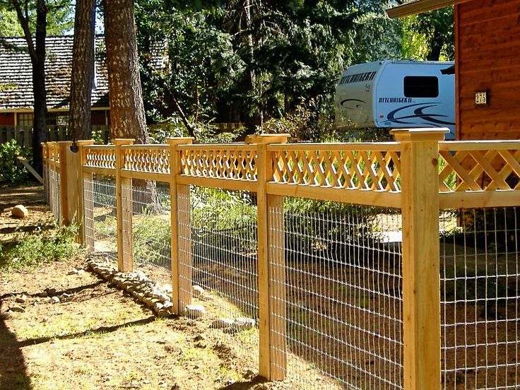 wire fence topped with lattice - Google Search | chicken | Pinterest