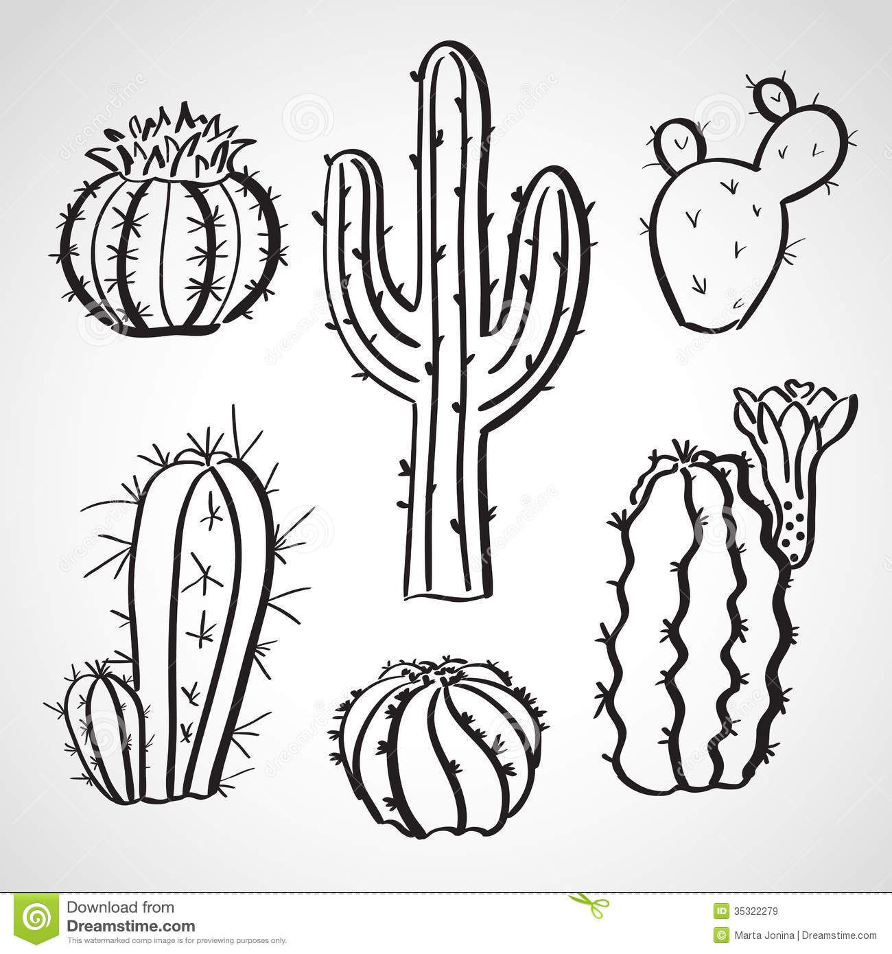 Ink style hand drawn sketch set - cactus set.   Cactus ...  Cactus Flower Outline