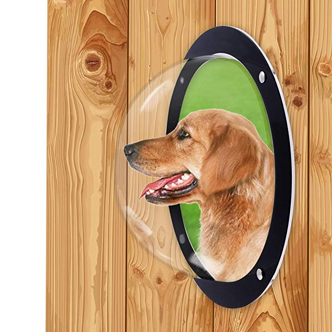 Amazon Com H B Luxuries Durable Acrylic Dome Dog Window For