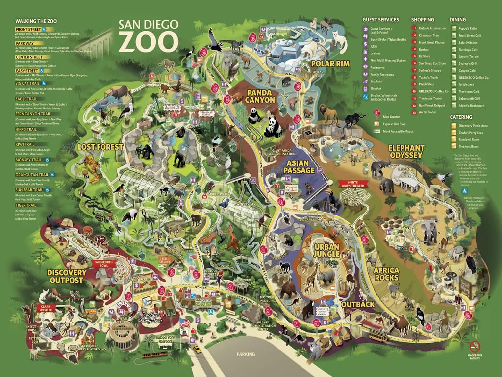 San Diego Zoo Map California Trip In 2019 San Diego Map San