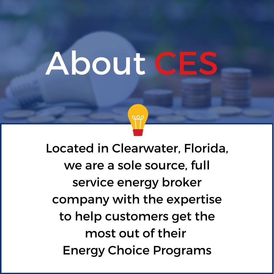 If You Ve Ever Wondered Who We Are Or What We Do Here Is A Little About Ces Informati In 2020 How To Memorize Things Positive Work Environment Customer Service Week