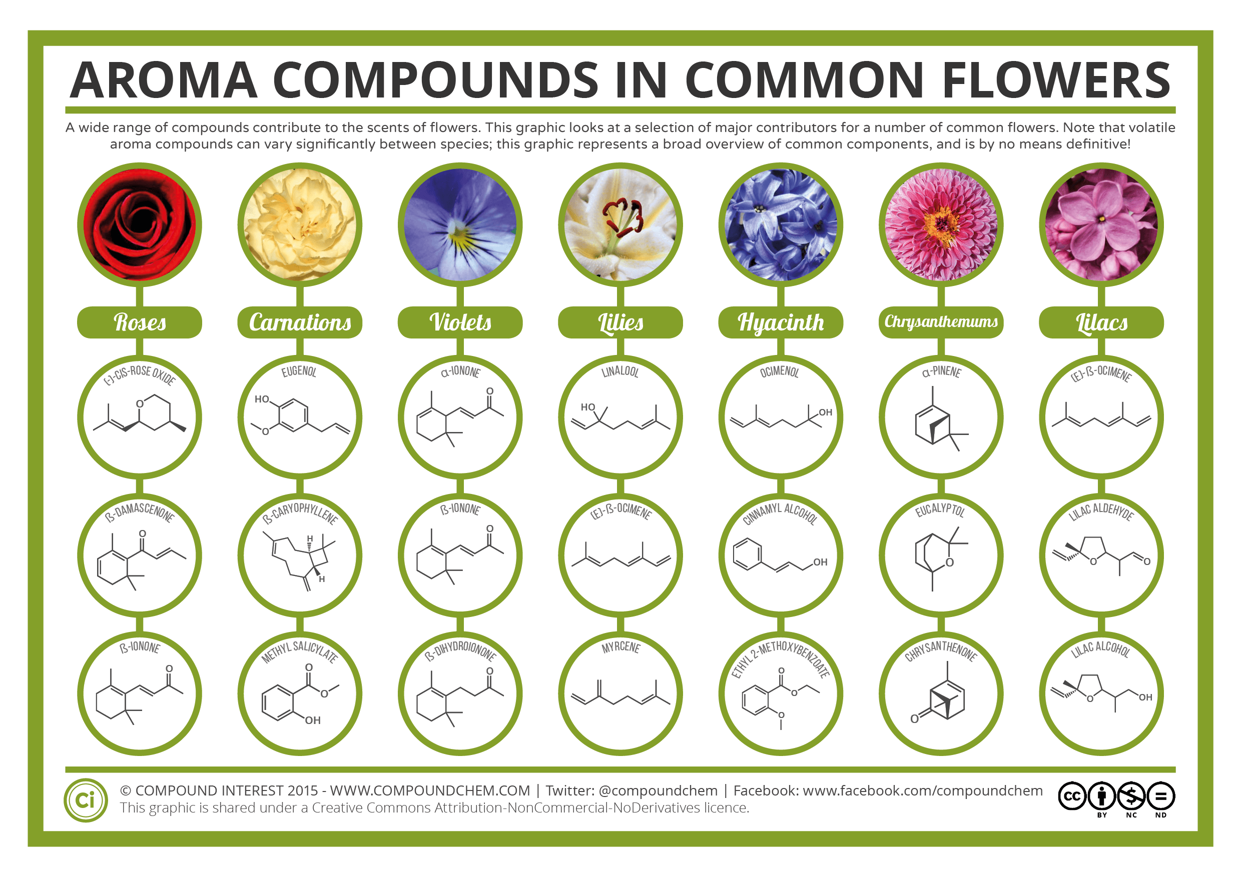Aroma-Chemistry-Scents-of-Flowers