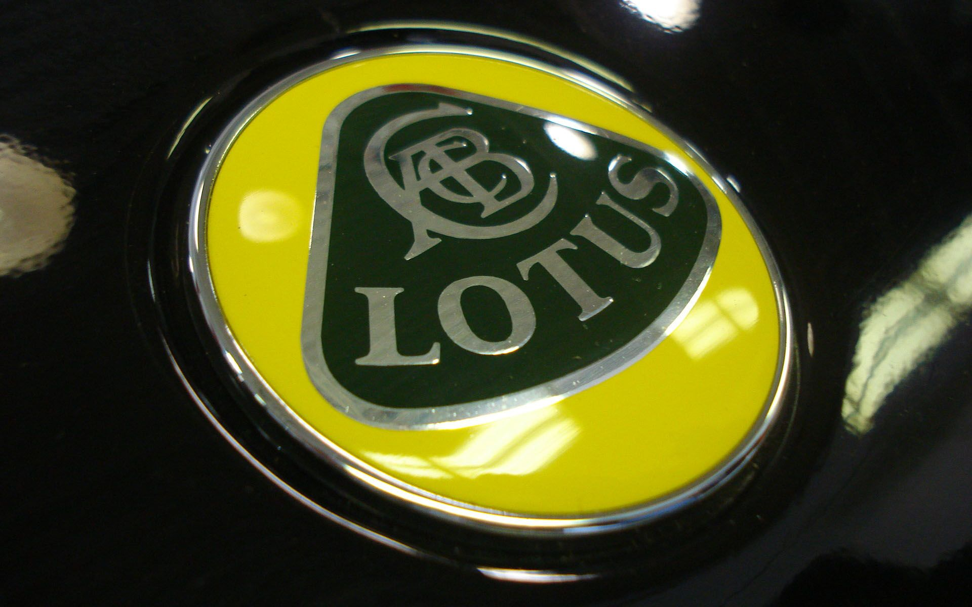 lotus car logo wallpaper wallpaper lotus pinterest