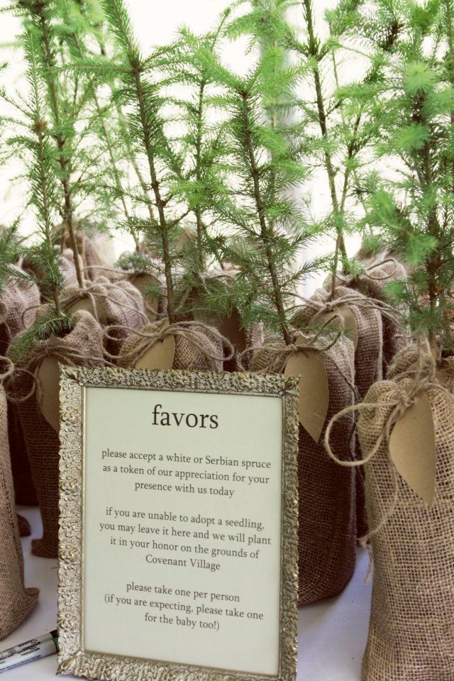 Tree Seedlings In Burlap Bags As Wedding Favors Whole Heart