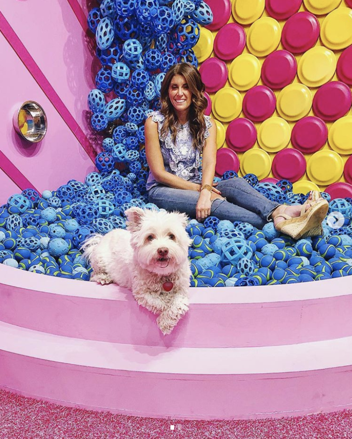 The Next Instagrammable Pop Up Museum Takes Nyc And It S For Dogs
