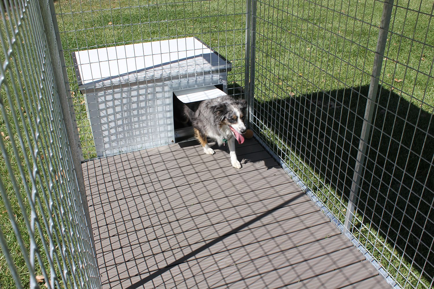 Galvanized Dog Kennel System With Exterior Fully Insulated