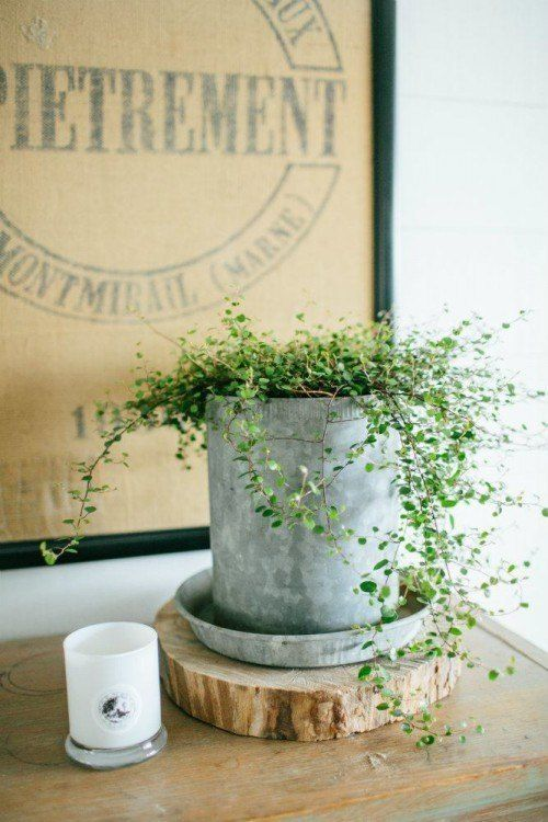 At Home: A Blog By Joanna Gaines | Magnolia