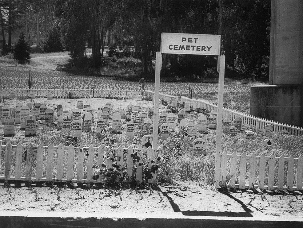 1962 Army personnel bury their pets at a cemetery on the