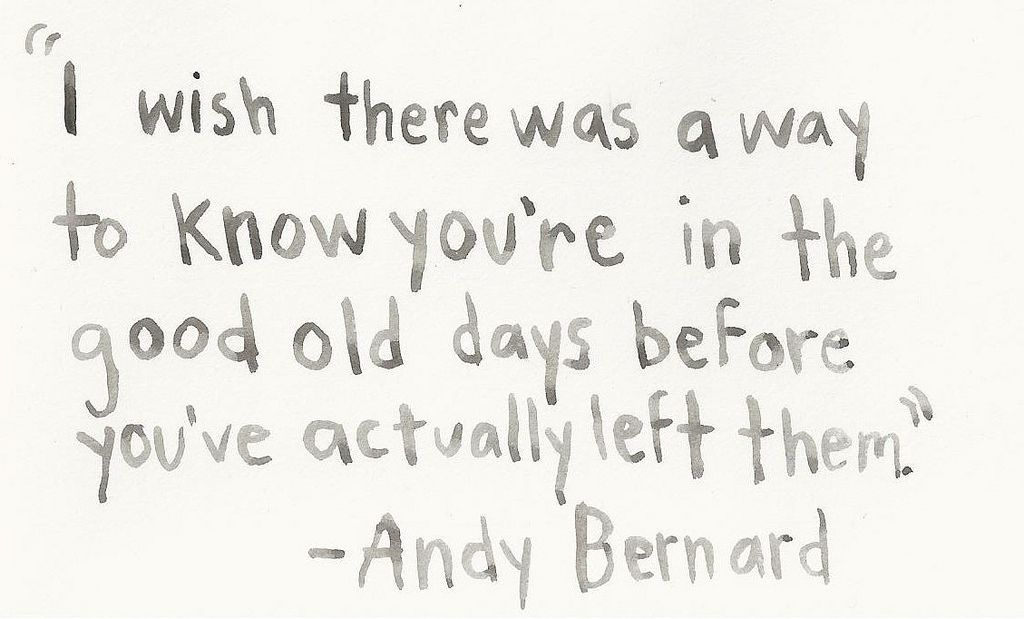the good days Andy bernard, You ve and Senior quotes