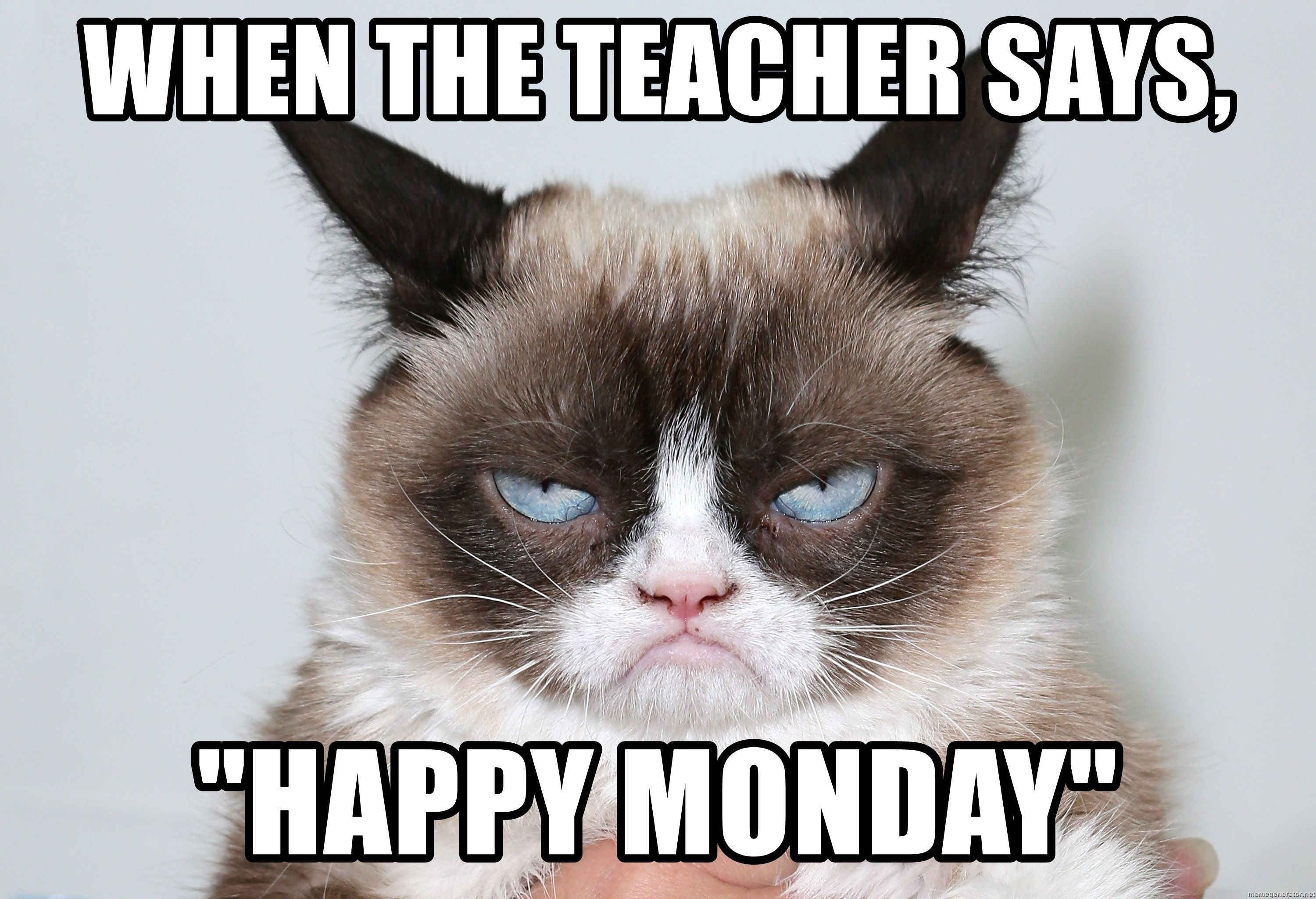 "Me As Grumpy Cat When The teacher says, ""Happy Monday"