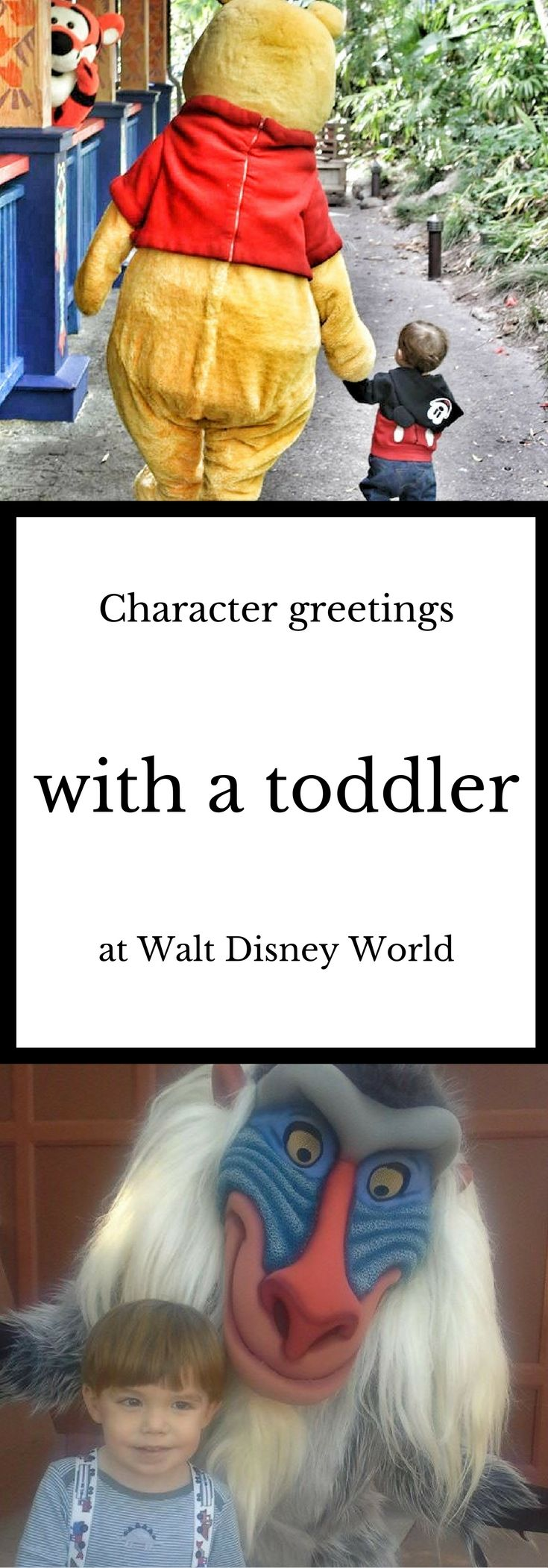 Character Greetings With A Toddler At Walt Disney World Pinterest