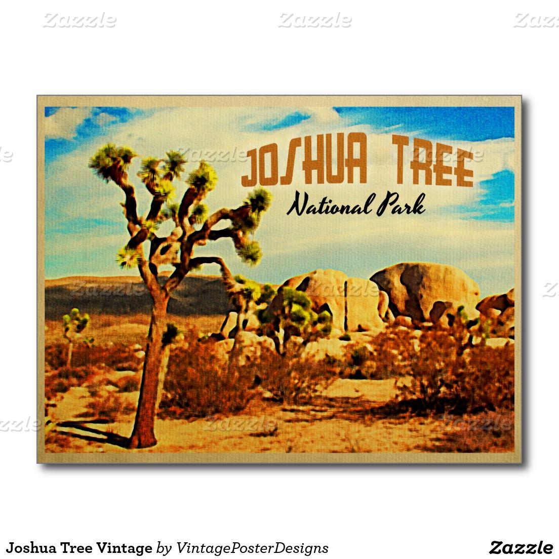 Vintage Park: Joshua Tree Vintage Postcard