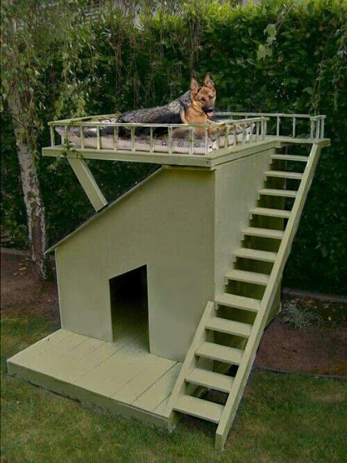 Pin By Karen Clifford On Dog Houses Dog Houses Dogs