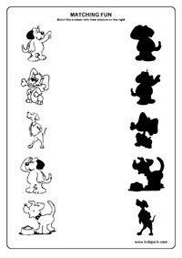 Animals Worksheets,Assessment Worksheets,Teachers