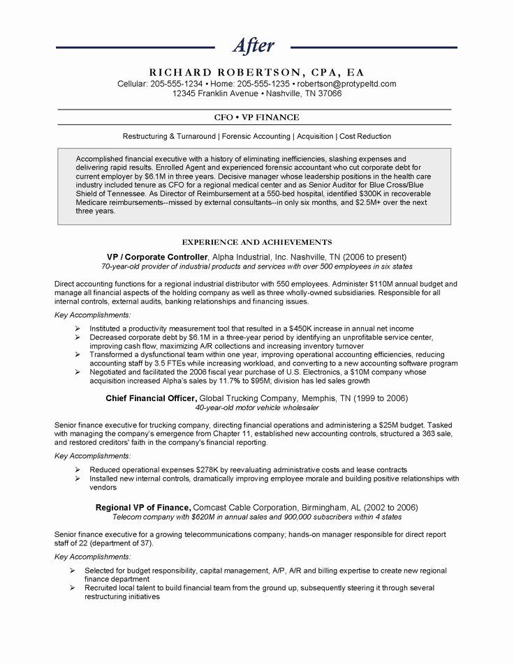 Chief Financial Officer Resume Best Of Chief Financial