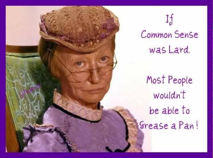 If common sense were lard  a0db73132899