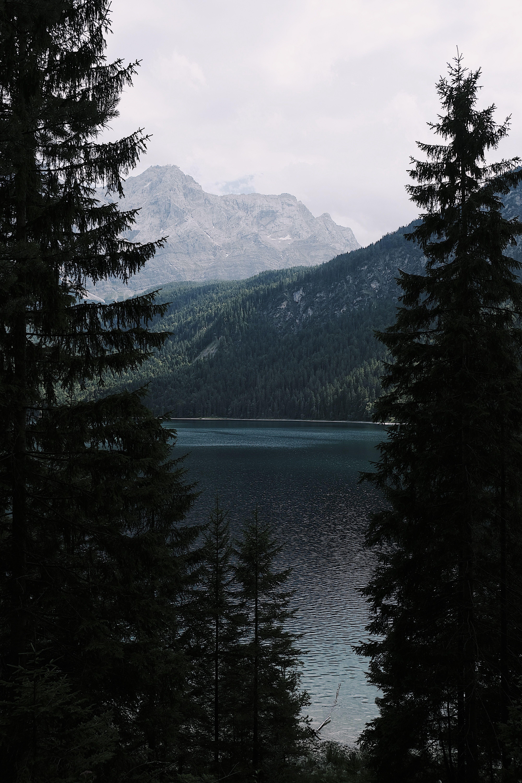 Hd Wallpaper View Through Tall Evergreen Trees On A Lake In The Mountains Eibsee Fir Grainau Cloud Hd Landscape Night Landscape Landscape Photography