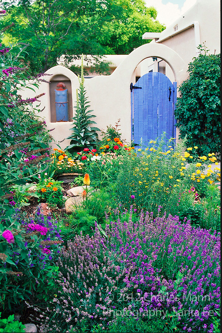 Week In Review Santa Fe Girls Weekend Graduation Drought Tolerant Garden Cottage Garden Landscape Design