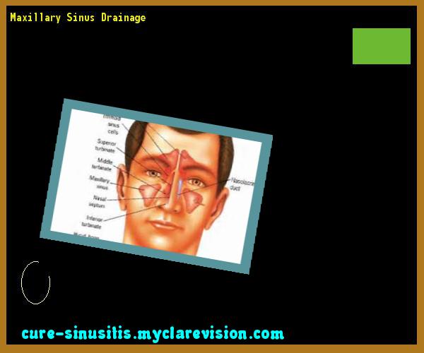 Maxillary Sinus Drainage 200635 - Cure Sinusitis | 17291903