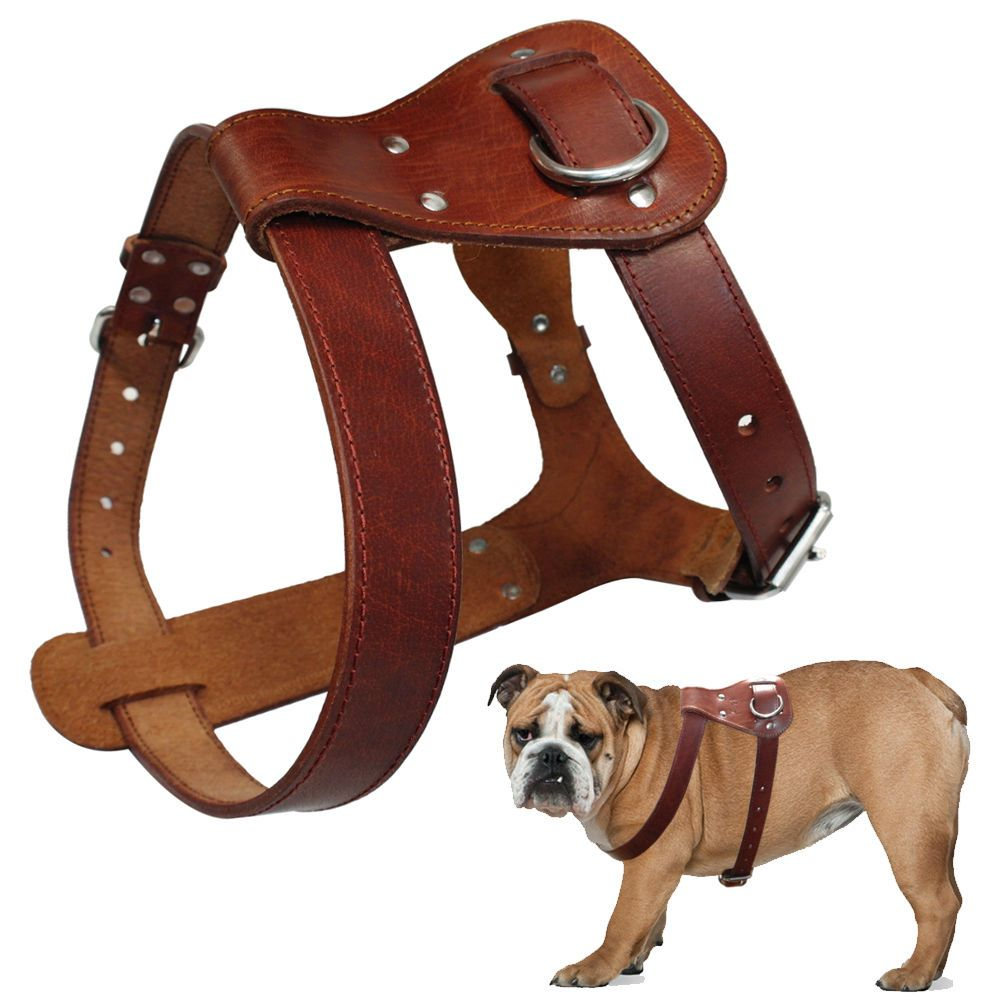 Hand Made Genuine Leather Pet Dog Harness For Medium Large Dogs