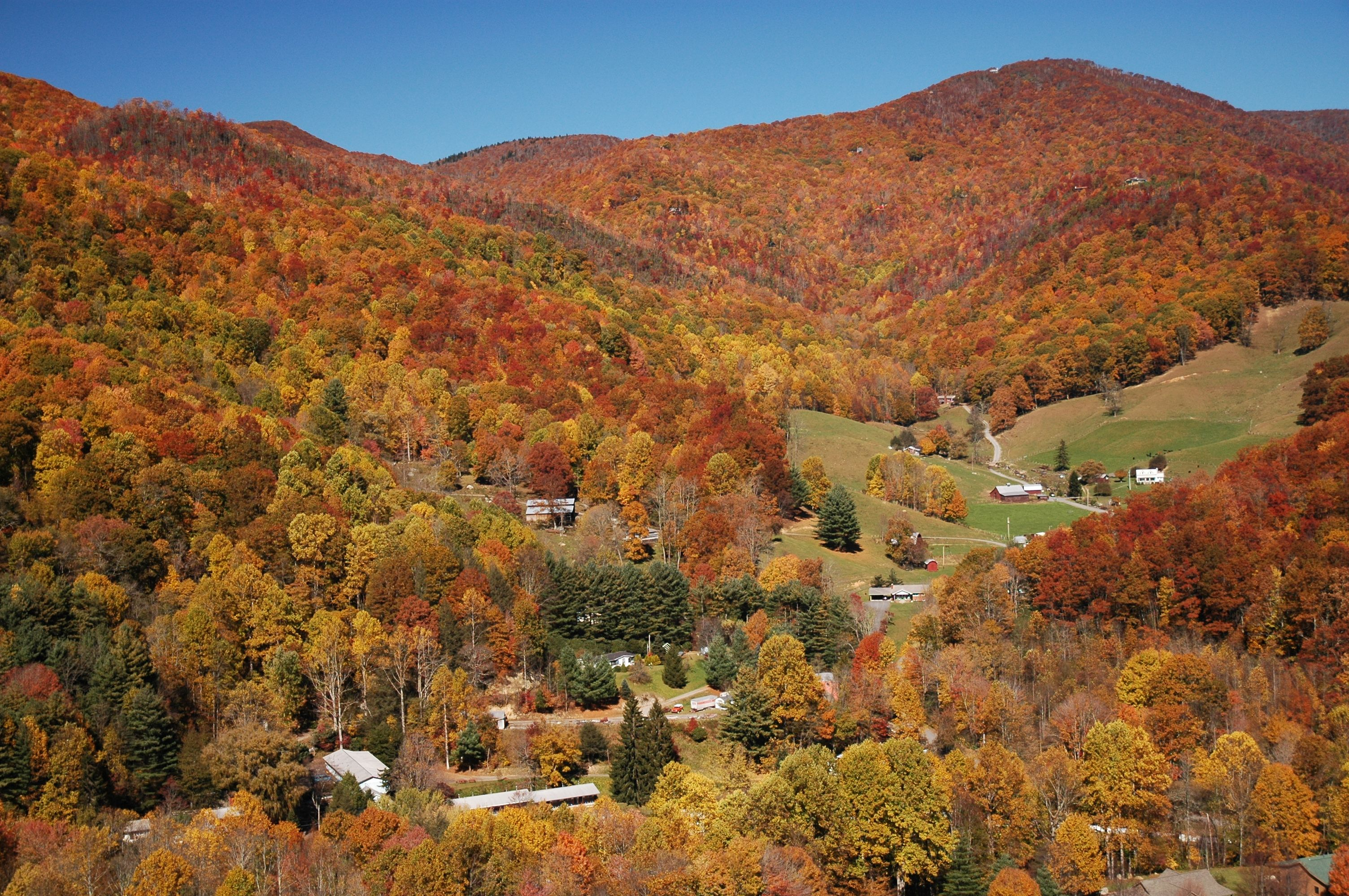 Fall Colors in Maggie Valley, NC