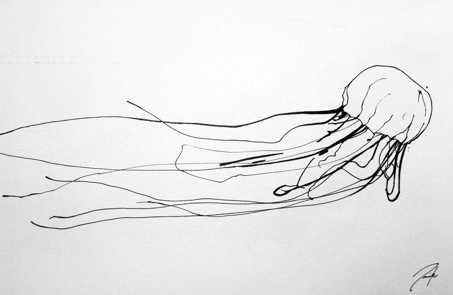 Box Jellyfish Sketch By Aaronfrick On Deviantart Inspiration