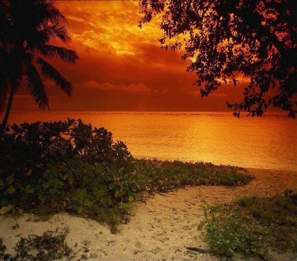Natura Meravigliosa Meravigliosa Spiaggia Guarda Sfondi Hd