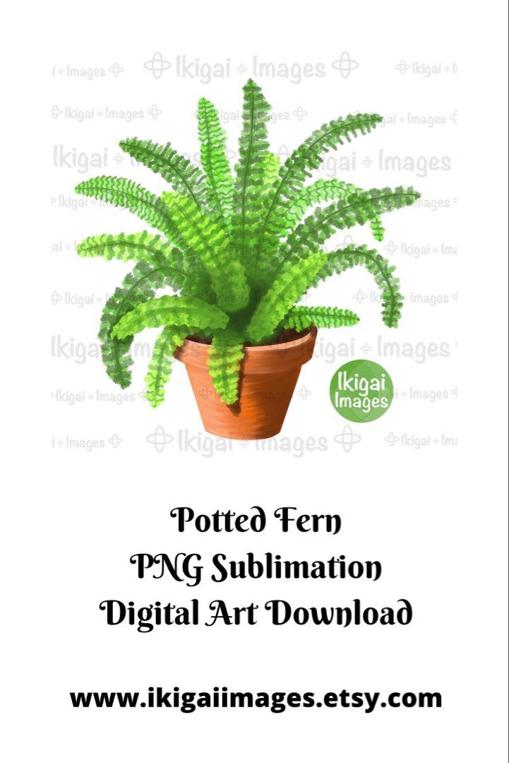 Fern Clipart PNG Sublimation File Potted Plant Clip Art | Etsy -   8 home plants Png ideas