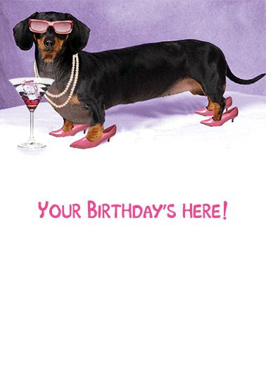 Dachshund Sausage Dog Party Blank Birthday Greeting Card Lovers Cards Paper Ephemera