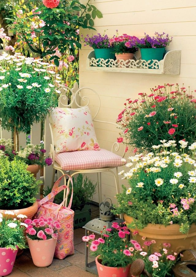 Základom úspešného pestovania kvetov na balkóne je vybrať správne rastliny.