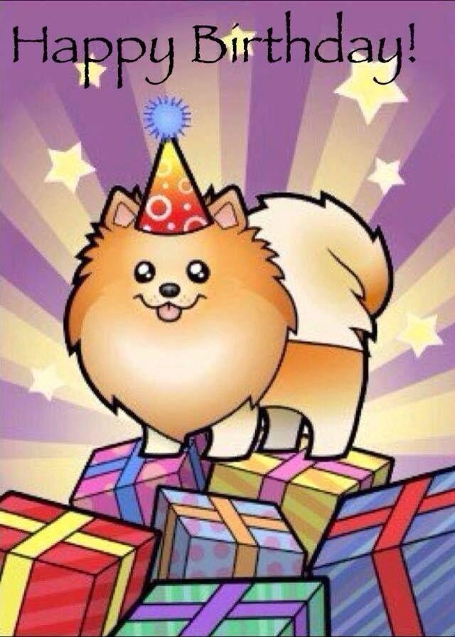 A Pommie Birthday Wish Birthday Wishes Birthday Meme Happy