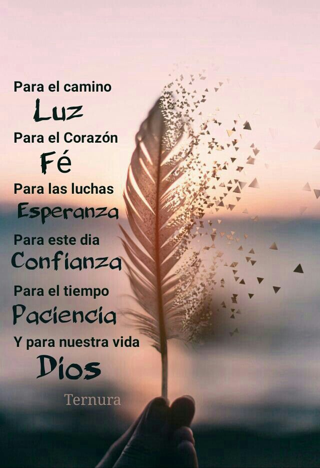 Pin De Joel Antonio Diaz Galvis En Ternura Frases De Oportunidades Alabanzas A Dios Imágenes De Paz