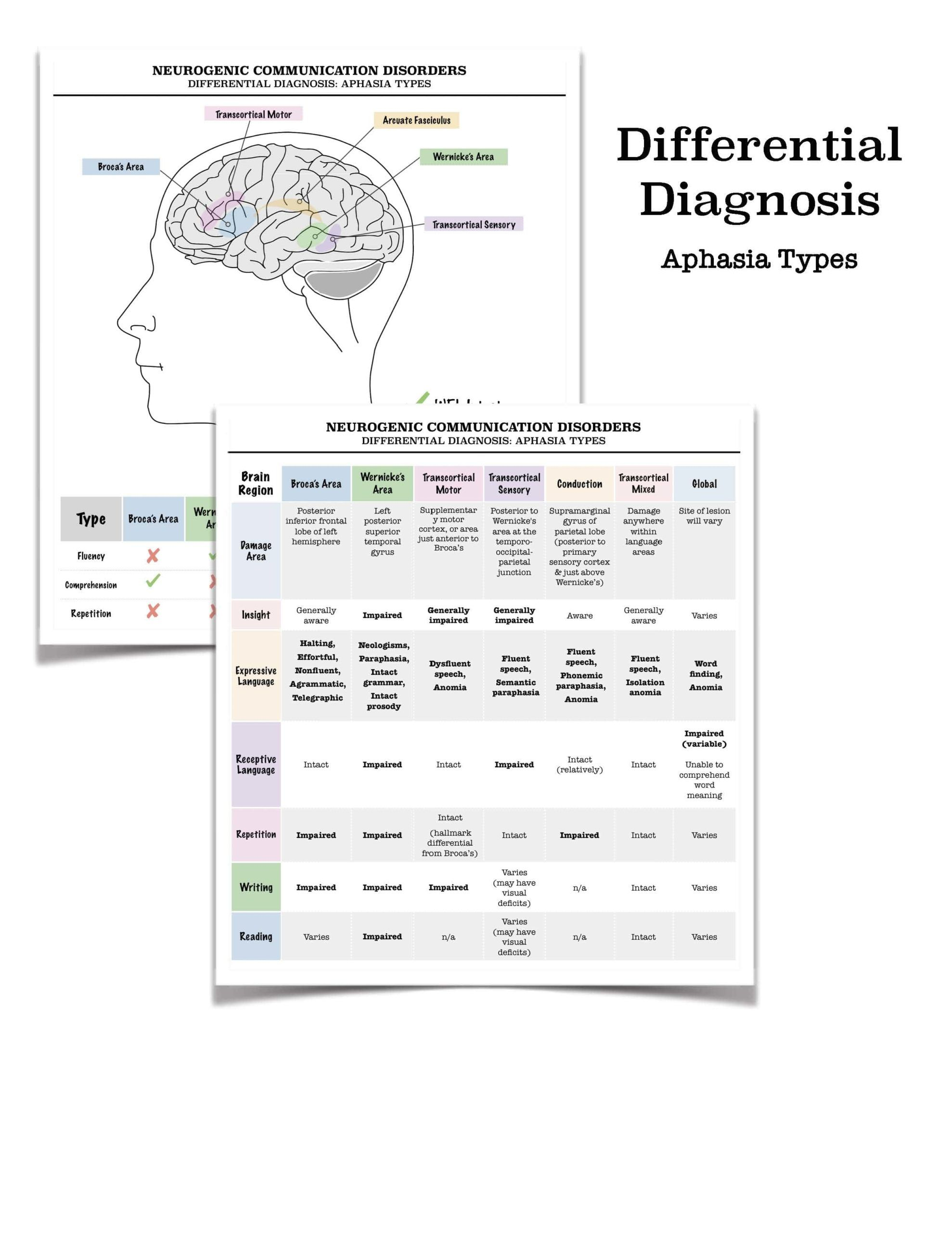 Handout Aphasia Differential Diagnosis Chart In