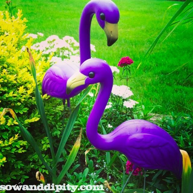 Life of a Garden Blogger    During Spring  is part of Garden, Gnome garden, Garden crafts, Garden inspiration, Garden art, Garden projects - The life of a real garden blogger in spring is insane  Here's a look at how much stuff needs to get done in spring and how all that prep leads into summer