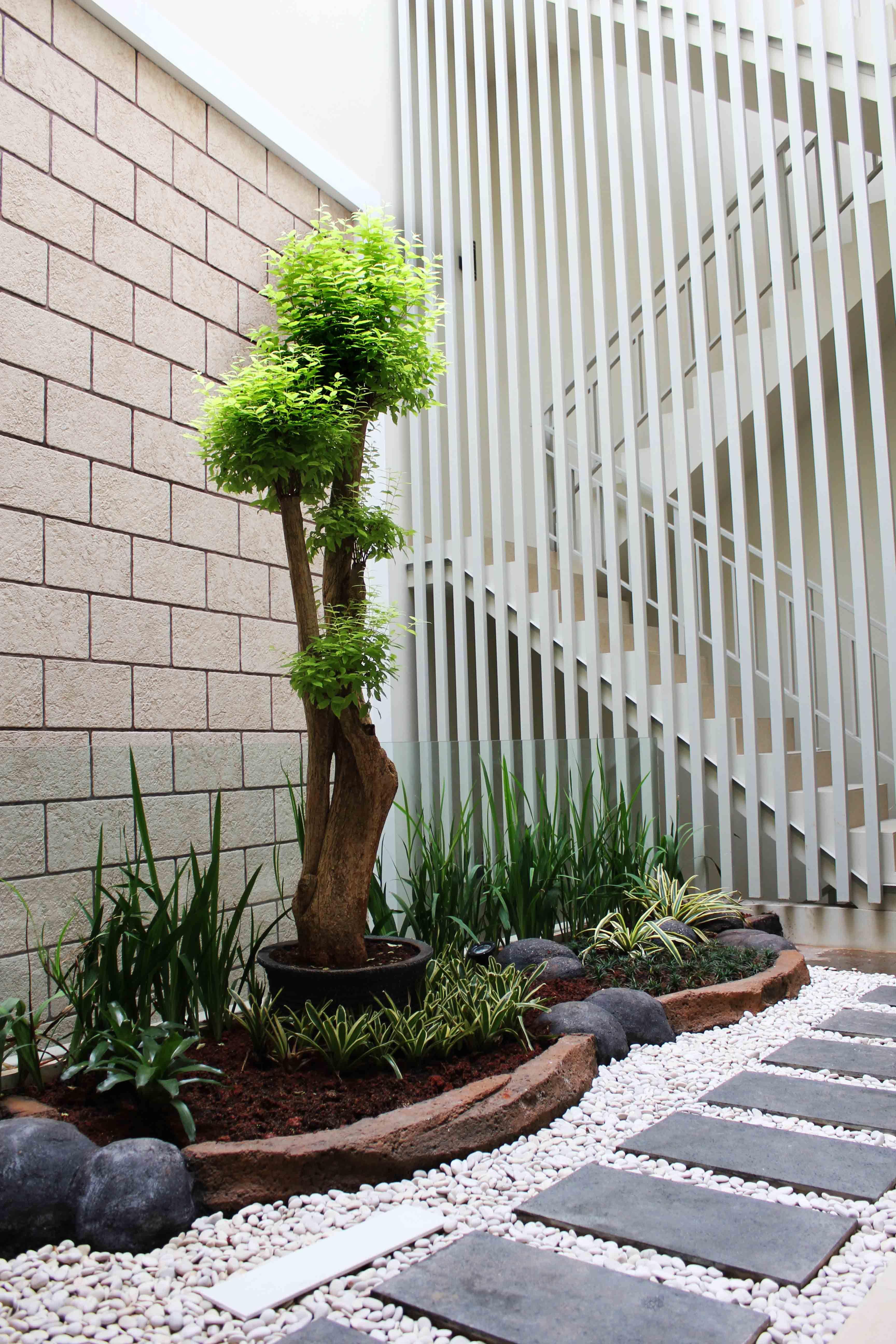 Taman Cantik Di Teras Rumah Minimalis Modern Ide Buat Rumah