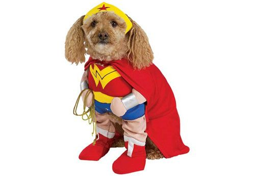 Dog Wonder Woman Madison Is Going To Be Wonder Woman And Baby A