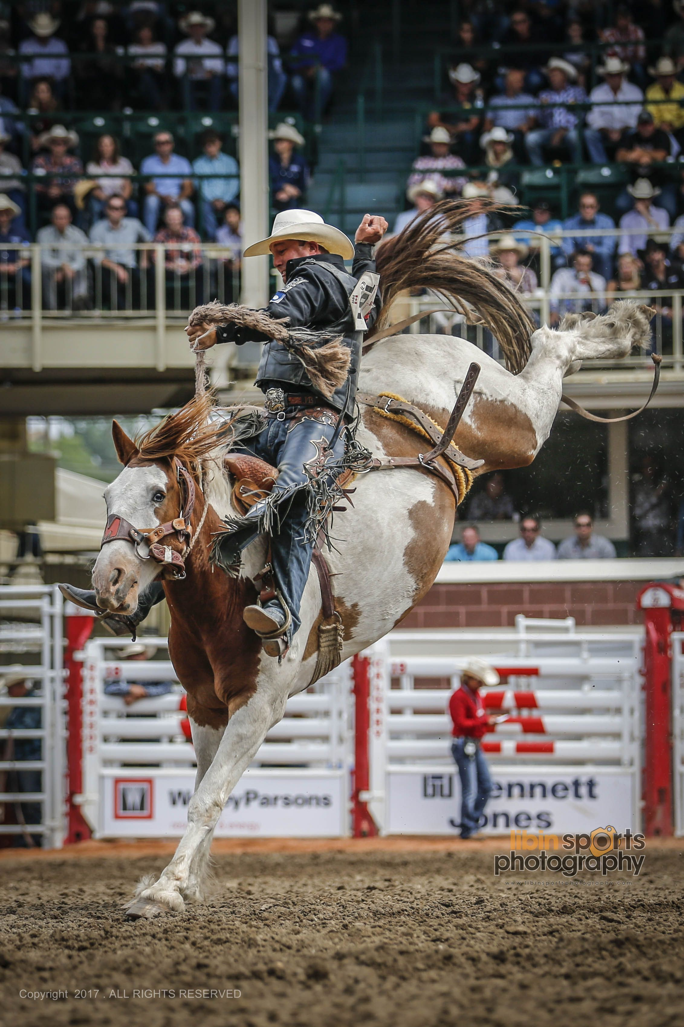 Calgary Stampede 2017 Rodeo Rodeo Rodeo Cowboys