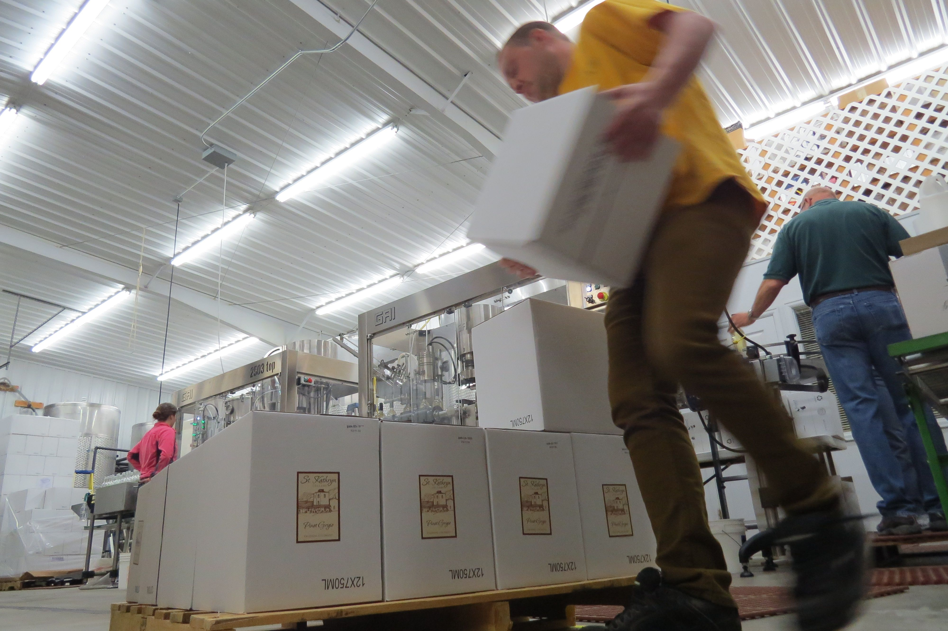 Stacking Fresh Cases Of Pinot Grigio Wine Stkathryncellars