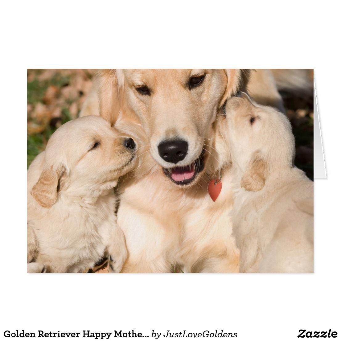 Golden Retriever Happy Mother S Day Card Zazzle Com Retriever