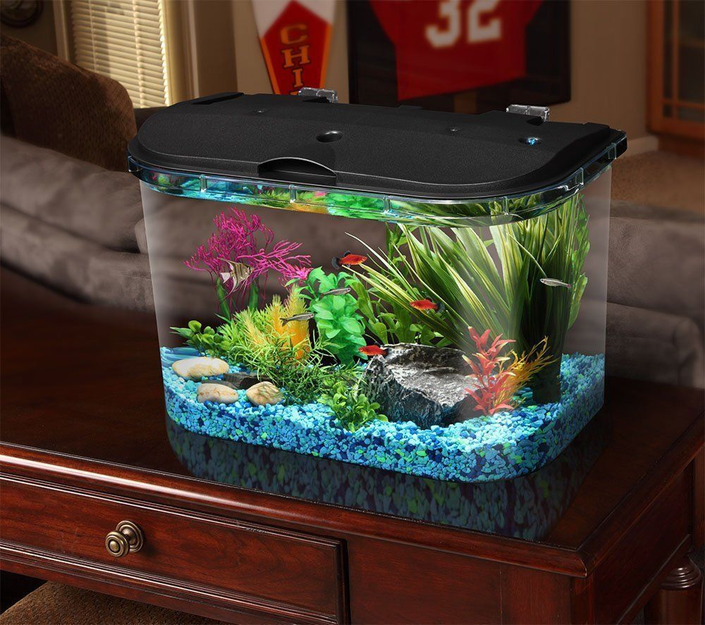 Aquarium fish 5 gallon tank - Big Fish Tanks And Aquariums Kit Led Light Freshwater Tank Decor 5 Gallon Filter Hawkeye