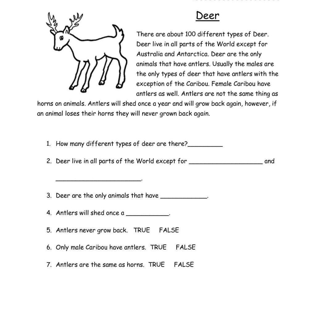 Comprehension Worksheets For Grade 3 Image Collections