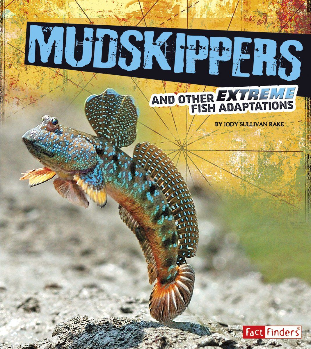 Mudskippers and Other Extreme Fish Adaptations (Extreme